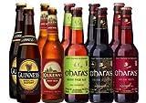 Irisches Bier Paket mit 10 Bieren
