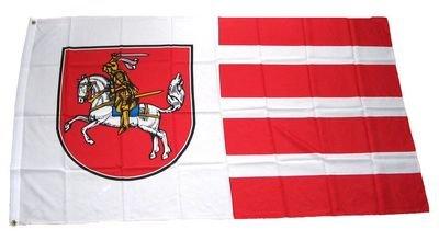 Fahne / Flagge Dithmarschen NEU 90 x 150 cm Fahnen