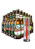 Bier Mix-Paket mit Glas: Vulkan Craftbier & klassische Biere 11x0,33l + 0,3L Bierglas