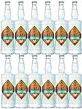 Salitos ICE Bier 12 x 0,65 Liter MW Flasche